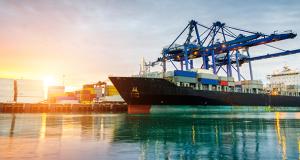 tuik-exports